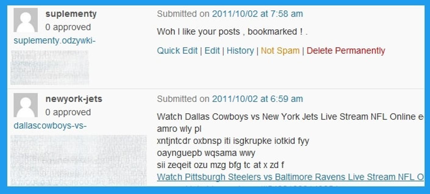 Comentarios de blog como spam
