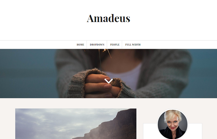 Tema gratuito de WordPress 2016-Amadeus