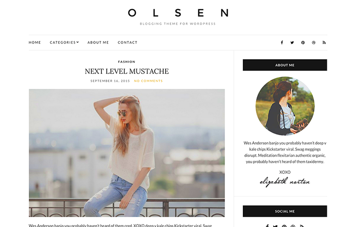 Tema gratuito de WordPress 2016-Olsen