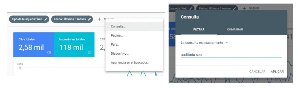Editar filtros de SEO para la consola de búsqueda de Google