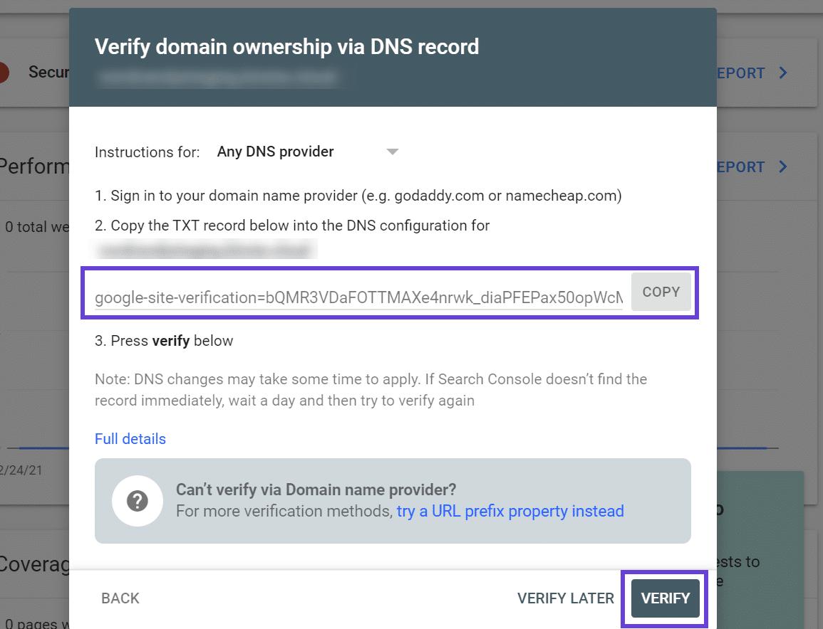 Resalte el registro TXT para verificar la propiedad a través de DNS