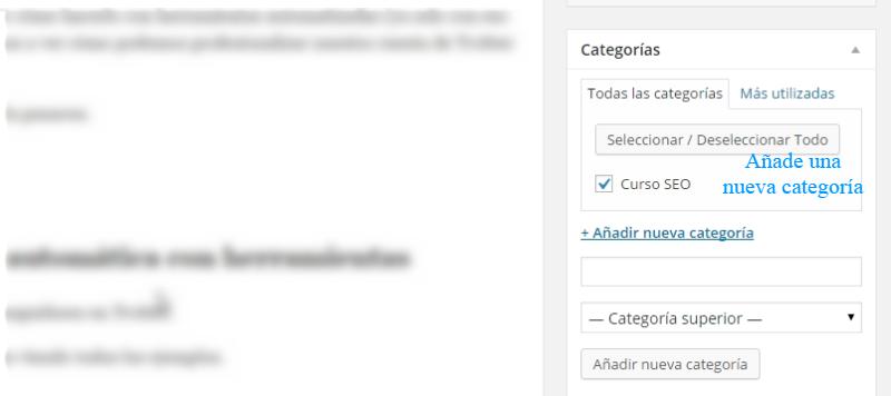 Agregar una nueva categoría de Artículos en WordPress