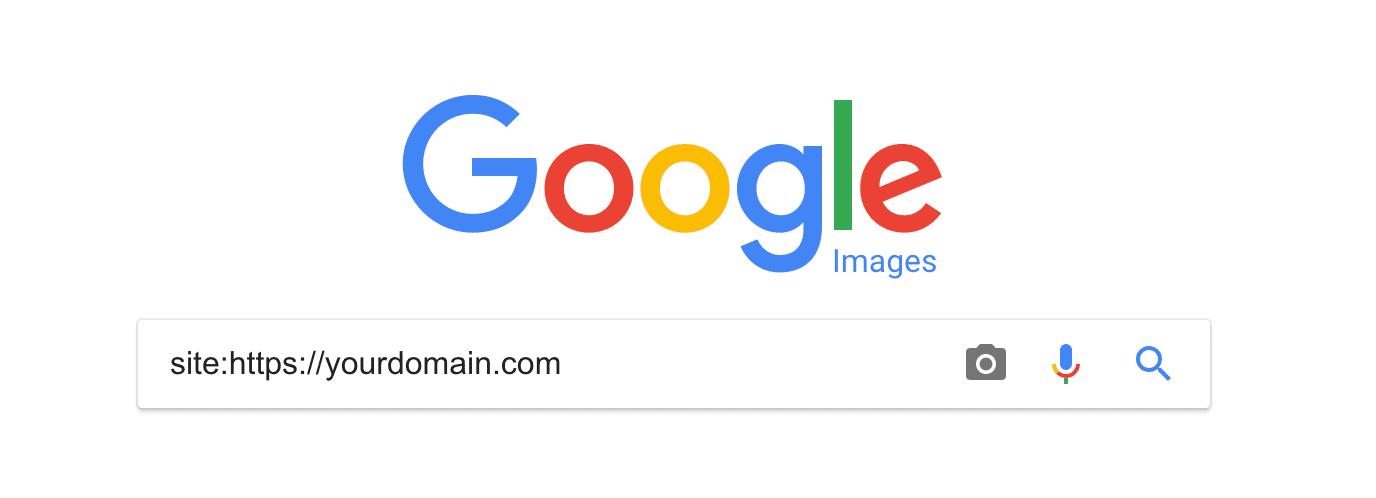 Consulte el índice de búsqueda de imágenes de Google