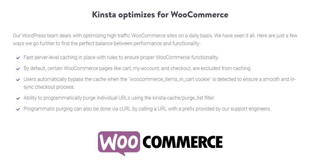 optimización de kinsta woocommerce